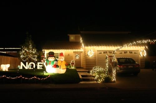 Snow-family Noel