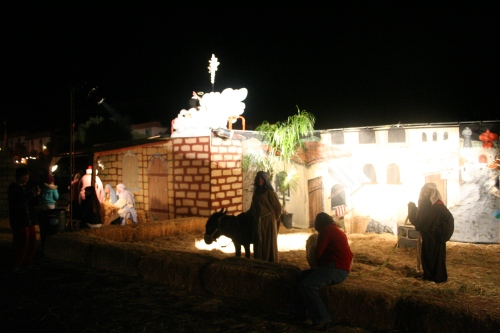 Pathways Living Nativity