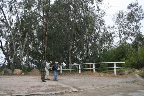 Mapping a Eucalyptus Grove