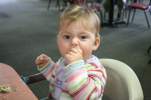 Babies Love Muffins