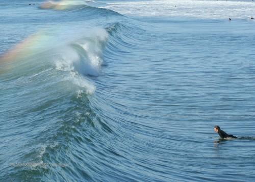 Surf's Up in OB
