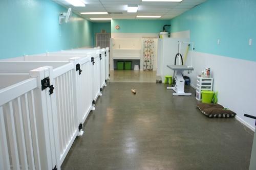 Aloha Pet Grooming - Interior